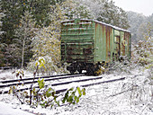 Abandoned, Abandonment, Color, Colour, Country, Countryside, Covered, Daytime, Deserted, Exterior, Freight car, Freight cars, Freight transportation, Freight-car, Freight-cars, Horizontal, One, Outdoor, Outdoors, Outside, Railroad, Railroads, Railway, Ra