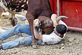 Action at rodeo during fair