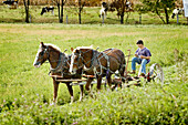 Amish life in Millersburg and Sugrar Creek Holms County Ohio