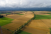 aerial view of fields in Calenberger Land, tree-lined country road, region Hanover, Lower Saxony, northern Germany