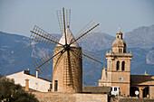 Windmill and Algaida Church, Algaida, Mallorca, Balearic Islands, Spain