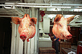 Animal, Animals, Butchers shop, Butchers shops, Color, Colour, Commerce, Dead, Detail, Details, Hang, Hanging, Head, Heads, Horizontal, Indoor, Indoors, Interior, Market, Markets, Pair, Pig, Pigs, Retail, Sell, Selling, Stall, Stalls, Swine, Two, CatV9, L