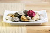 Close up, Close-up, Closeup, Color, Colour, Concept, Concepts, Decoration, Heap, Heaps, Horizontal, Indoor, Indoors, Inside, Interior, Modern, Natural, Pebble, Pebbles, Pile, Piles, Still life, Stone, Stones, Symbol, Symbols, Tray, Trays, L71-315788, agef