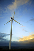 Alternative energies, Alternative energy, Big, Cloud, Clouds, Color, Colour, Concept, Concepts, Daytime, Environment, Exterior, Height, Large, Low angle view, One, Outdoor, Outdoors, Outside, Renewable energy, Skies, Sky, Tall, View from below, Wind, Wind