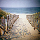 Beach on the Cape Cod national seashore, near Truro. Massachusetts, USA