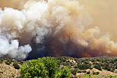 Lake Hughes fire which started on July 12, 2004. California. USA