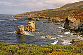 Garrapata State Park area along the Pacific Coast Highway in California during the springtime