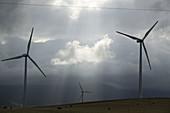 Abend, Aktivität, Aussen, Bewegung, Bewölkt, Draussen, Drehen, Energie, Erneuerbare Energien, Farbe, Himmel, Industrie, Industriell, Kraft, Silhouette, Silhouetten, Tageszeit, Umwelt, Wind, Windfarm, Windfarmen, Windkraft, Windpark, Windparks, Windturbine
