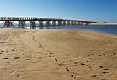 Wooden bridge to access to Punta Caimán beach, Isla Cristina. Huelva province. Andalusia. Spain