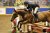 Ability, Action, Activity, Adult, Adults, Animal, Animals, Blurred, Caucasian, Caucasians, Color, Colour, Competition, Competitions, Competitor, Competitors, Contemporary, Contest, Contests, Equitation, Full-body, Full-length, Horizontal, Horse, Horseback