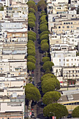 Pastel houses on hilly, tree-lined Lombard Street in residential section of the North Beach neighborhood in San Francisco, California.