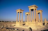 Ruins of the old Greco-roman city of Palmira. Syria