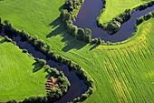 Miandring river in agricultural landscape. Kåge river. Västerbotten. Sweden