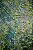 Meandring river in wetland, aerial view. Lappland, Sweden