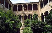 Columns in El Salvador cathedral cloister. Orihuela. Alivante province. Comunidad Valenciana. Spain.
