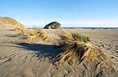 Dunes in Monsul beach, Cabo de Gata-Níjar Natural Park. Almería province, Andalusia. Spain
