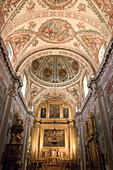 Church vault. Hospital de Los Venerables. Sevilla. Andalucia. Spain