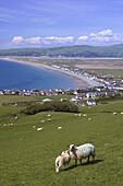Borth Ceredigion Wales GB