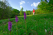 Mid adult woman on meadow with orchids, Monte San Giorgio, Ticino, Switzerland