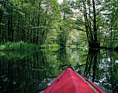 Kayaking in Spreewald, Brandenburg, Germany