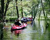 Boat trip, Spreewald near Lubbenau, Brandenburg state, Germany