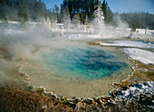 A hot spring in Silex Spring, Fountain Paint Pot, Yellowstone national park, Wyoming, North America, USA