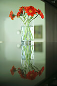 Still life of a vase with flowers, Decoration, Home, Lifestyle