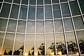 Reflections. Trade building. Architect: José Antonio Coderch, 1968. Barcelona, Catalonia, Spain