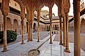 Patio de los Leones. Alhambra. Granada. Andalucia. Spain.