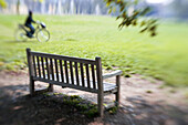 Aged, Autumn, Autumnal, Bench, Benches, Bicycle, Bicycles, Bike, Bikes, Biking, Calm, Calmness, Color, Colour, Contemporary, Cycle, Cycles, Daytime, Empty, Exterior, Fall, Grass, Human, Lawn, Leisure, Old, One, Outdoor, Outdoors, Outside, Park, Parks, Pea