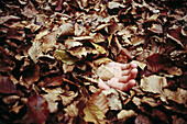 Adult, Adults, Autumn, Autumnal, Buried, Clue, Clues, Color, Colour, Contemporary, Country, Countryside, Covered, Crime, Crimes, Daytime, Dead, Death, Detail, Details, Disturbing, Exterior, Fall, Fallen leaves, Forest, Forests, Ground, Grounds, Hand, Hand