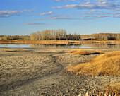 Drought at Wetland Bird Sanctuary near Devon, Alberta, Canada