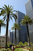 Bunker Hill District. Corporate Buildings Downtown Los Angeles. California. USA.