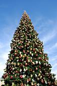 Außen, Ball, Bälle, Blau, Blauer Himmel, charakteristisch, Dekoration, Eins, Farbe, Fest, Feste, Froschperspektive, Himmel, Konzept, Konzepte, Kugel, Kugeln, Nahaufnahme, Nahaufnahmen, Symbol, Symbole, Tageszeit, Tradition, Traditionen, Typisch, Weihnacht