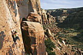 Female climber leading a crack climb in Indian Creek, Utah near Canyonlands National Park. USA
