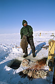 Professionnal fisherman fishing for halibut through ice hole using 800 m long line, Disko bay, Greenland