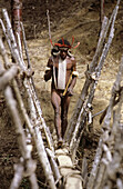 Dani hunter with adornment crossing wooden bridge in the Baliem valley, Western Papuasia, Former Irian-Jaya, Indonesia