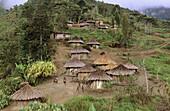 Yalis village of Serkasi, Western Papuasia, Former Irian-Jaya, Indonesia