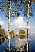 Aussen, Baum, Bäume, Draussen, Farbe, Geräuschlosigkeit, Horizont, Horizonte, Landschaft, Landschaften, Natur, Ökosystem, Ökosysteme, Reflektion, Reflektionen, Ruhe, Ruhig, See, Seen, Spiegelbild, Spiegelbilder, Spiegelung, Still, Stille, Tageszeit, Wasse
