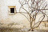 Color, Colour, Concept, Concepts, Country, Countryside, Daytime, Detail, Details, Dried, Dry, Exterior, Facade, Façade, Facades, Façades, House, Houses, Nature, Outdoor, Outdoors, Outside, Rural, Tree, Trees, Vegetation, Wall, Walls, Window, Windows, T83-