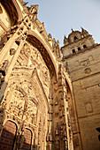 Tower and façade of new cathedral, Salamanca. Castilla-León, Spain