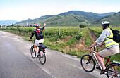 Zwei Leute beim Radfahren, Weinanbaugebiet zwischen Krems und Dürnstein, Wachau, Österreich