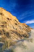 Rotes Kliff im Sonnenlicht, Insel Sylt, Schleswig Holstein, Deutschland, Europa