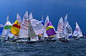 Sailing boats on the sea, Kiel week, Kiel, Schleswig Holstein, Germany, Europe