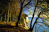 Chalk cliffs in autumn, Jasmund National Park, Rugen island, Mecklenburg-Western Pommerania, Germany