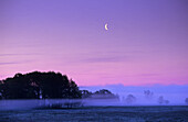 Foggy scenery near Lancken-Granitz, Rugen island, Mecklenburg-Western Pomerania, Germany