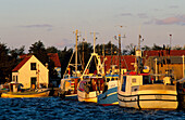 Europe, Germany, Mecklenburg-Western Pomerania, isle of Hiddensee, Vitte harbour