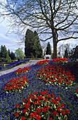 Blumenrabatte im Schlosspark, Insel Mainau, Bodensee, Baden-Württemberg, Deutschland