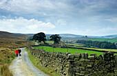 Europe, England, Yorkshire, West Yorkshire, Haworth Moor, Bronte County