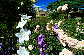 Europe, England, Gloucestershire, Cotswolds, Chipping Campden, Hidcote Manor Garden